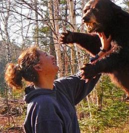 Adde -vs-bear