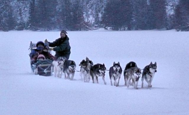 1226-dog-sled1