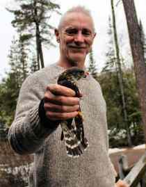 Bob with hawk